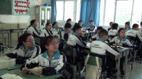 部编人教五四学制化学九年级《生活中常见的盐》优质课教学视频,四川省