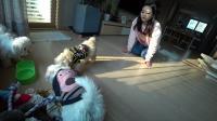 小伶玩具:coco和曹操&刘备的第一次相遇!coco会更喜欢谁呢? 第4集