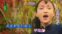 红高粱片尾曲《九儿》- 韩红--蓝光(1080p)--视频制作:腾飞音乐工作室