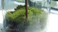 《宅男美食》帮你找心理平静的玻璃花园
