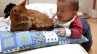 不愿对小孩发怒的猫
