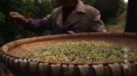 传奇秃黄油:百只大闸蟹铸就的美味