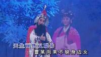 林柔佳潮剧艺术专辑B之⒉怜香惜玉表衷情_标清