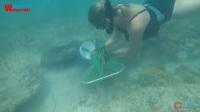 【去健身】美女VS龙虾大作战 一人一网猎捕巨型龙虾 看着就流口水