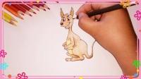 袋鼠简笔画 简笔画教程
