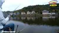钓鱼实战(39)这才是钓鱼,你们都是在喂鱼