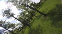 【TURBO@小强】树林练习freestyle