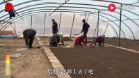 农民王小:你一言我一语、农村乡亲们干啥这么开心