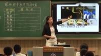 中學生物《探秘種子各結構的發育》優秀教學視頻-商老師