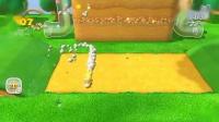 超级马里奥3D世界 world-2