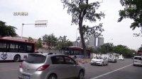"""【拍客】成都霸道古树""""盘踞""""马路中 被撞30多次!!!"""