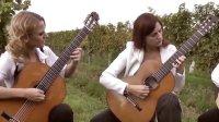 guitArtistas吉他四重奏《花之舞》(出自Nutcracker Suite op.71)