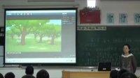 地理―八年級上冊―第三章:中國的自然資源第一節自然資源總量豐富人均不足―人教課標版―坦洲實驗中學―坦