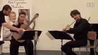 Globeduo二重奏 - 舒伯特a小调奏鸣曲(1) - SCHUBERT