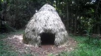 【藤缠楼】澳洲原始小哥视频系列2 - Primitive Technology_ Thatched Dome Hut