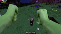 MC动画-真人绿巨人浩克怒砸小村庄-Realistic Gaming
