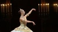 芭蕾《胡桃夹子》糖果仙女变奏-9位舞者