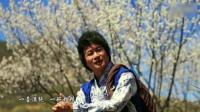春暖花开回桃源