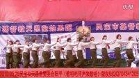 灵宝市基督教天恩堂赞美会阳平教会(歌唱吧同声来歌唱2012.05.29)