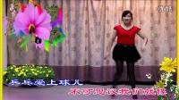 你是我的妞【DJ舞曲】美妞妞广场舞 1080P超清MV
