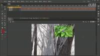 FLASH CC版教程 012 视频音频的导入和格式转换