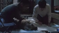 导盲犬小Q国语完整版 感谢评语者