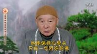 《2014无量寿经科注第四回学习班-字幕版》(197)