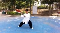 秦洪彬传统杨式太极剑
