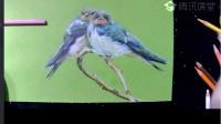 【艺达】彩铅零基础快速入门-双飞燕