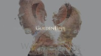 WonderfulDays · 婚礼快剪 | GoldenLove出品