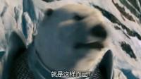 黄金罗盘—推荐最新最火电视剧 精彩看点不间断