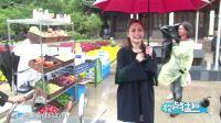 第20180117期:李小璐被曝探班贾乃亮粉丝辟谣  汪东城公布与日女星莉娜恋情