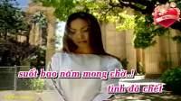 情人的关怀(越南翻唱邓丽君歌曲)Cánh chim Lạc Loài 演唱 锦莉