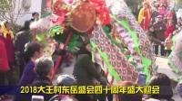 2018临城镇大王村东岳盛会四十周年