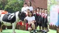 天津枫叶幼儿园马术安全教育