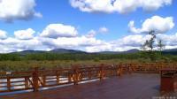 旅游东北(七)阿尔山国家森林公园