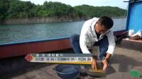 鲤鱼饵怎么垂钓草鱼 开饵的学问到底在哪 听大毛老师怎么说