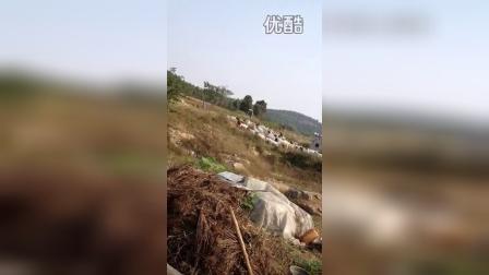 山东枣庄大兴养殖场