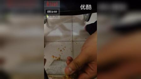 红木仙作滴血莲花   鲜果  雕刻教程  工具_高清