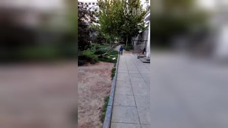 天津张昊霖独轮车999