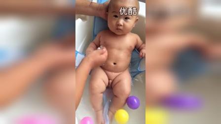 春卷的健康树10_标清