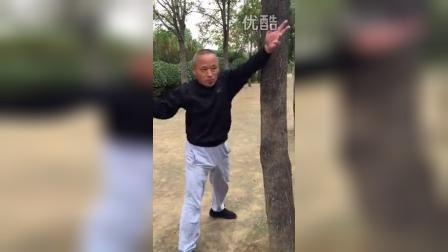 八卦掌操手-打树2