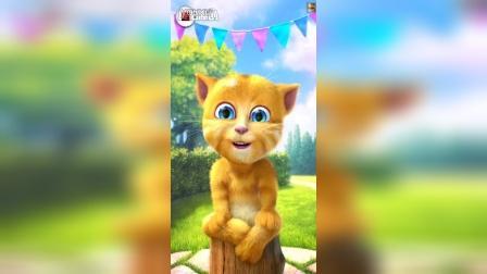 赵云视频会说话的金杰猫祝大家2016年猴年快乐