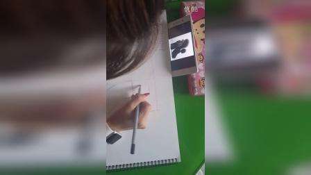 宠物美容教学视频