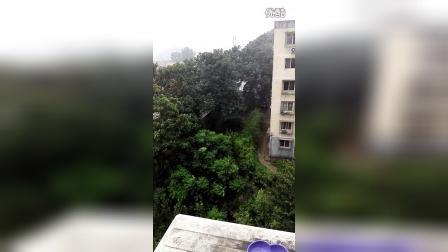 7.14北京突降暴雨随拍