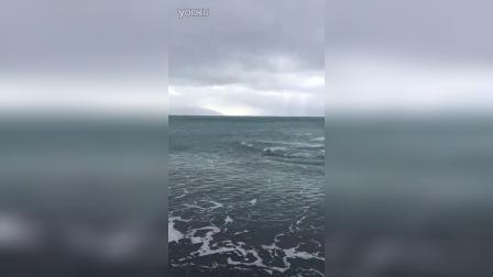 凯库拉惊现超近岸几乎要搁浅的鲸鱼