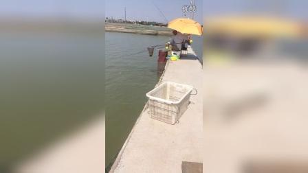 淮阳龙湖钓鱼
