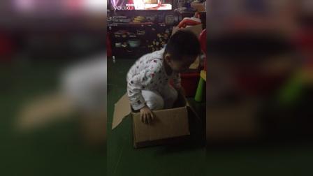纸箱有这么好玩吗?