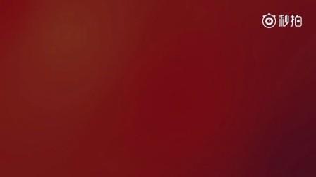 澳航澳洲原住民彩绘787亮相