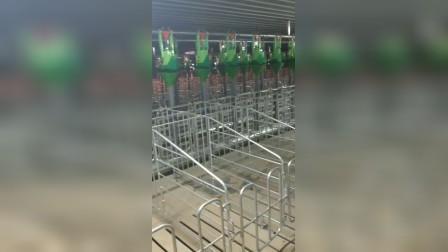 青岛普惠工程自动化养猪设备-民正1